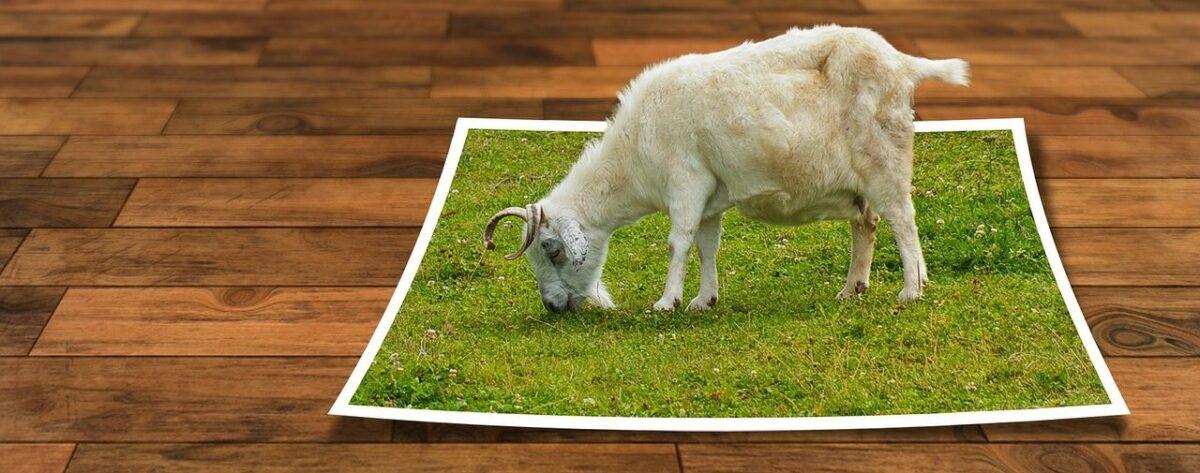 右クリックでまとめて画像をリサイズできる『Image Resizer for Windows』